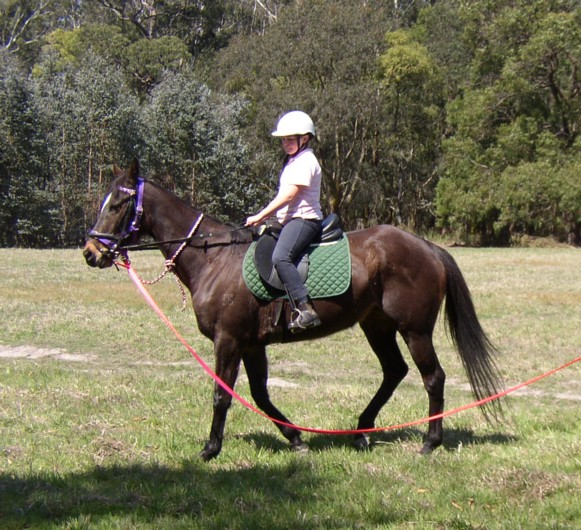 On lunge